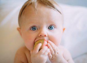 Phương pháp chế biến ăn dặm đầy đủ – Từ 6 đến 36 tháng tuổi