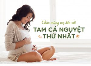 Tam cá nguyệt đầu tiên – Chúc mừng mẹ với tin vui nha!!!