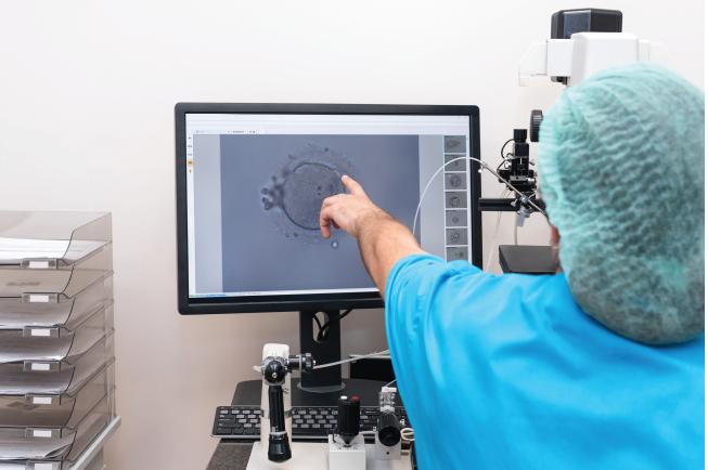 Bác sĩ tiến hành phương pháp thụ tinh sinh đôi nhân tạo trong ống nghiệm
