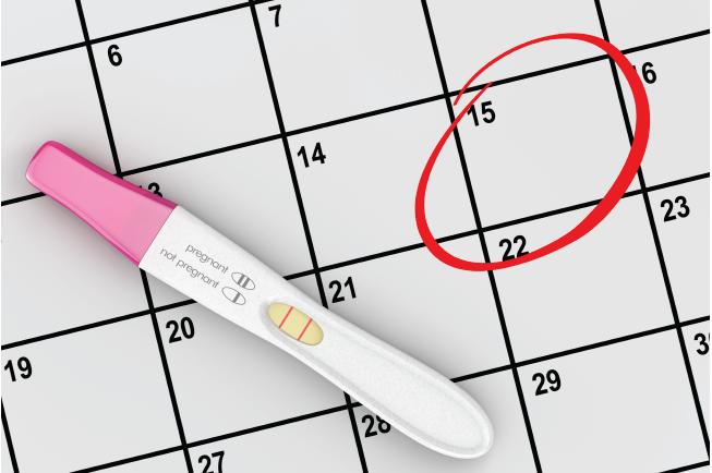 Ngày chuyển phôi sẽ được coi là ngày thụ thai đối với mẹ