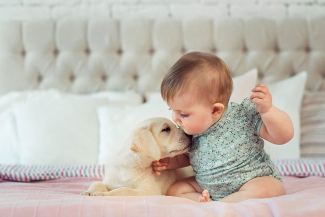 Lông thú cưng, sâu bệnh, phấn hoa hoặc khói bụi,... có thể là tác nhân gây bé bị nổi mẩn đỏ như rôm