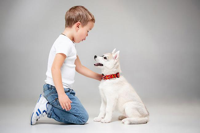 Không cho bé chơi với thú cưng vì lông động vật rất dễ gây dị ứng